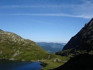 pyreneeen bergopper