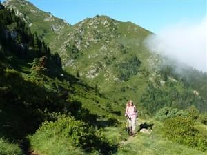pyreneeen wandelen